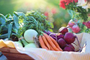 Como ter uma horta dentro de casa? Aprenda 6 truques! Horizonte Construtora