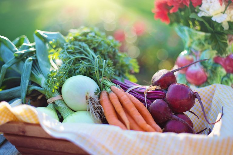 Como ter uma horta dentro de casa? Aprenda 6 truques!
